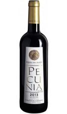 Pecunia 2014 12 Meses